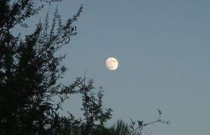Moon over Patagonia lake